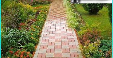 Kaip padaryti gražią tvarkingą veją šalyje savo rankomis: sodinimo taisyklės